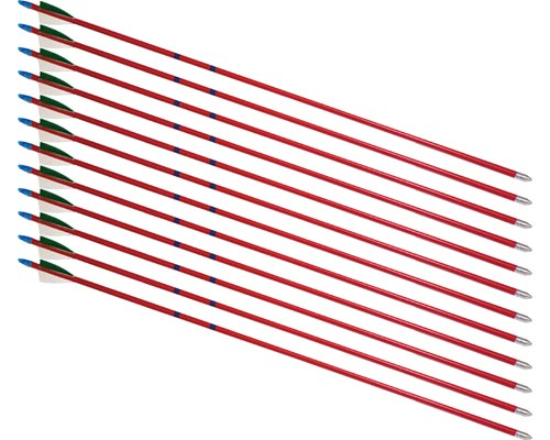 26'' Hardwood 5/16'' Arrows - 12 Arrows: SP