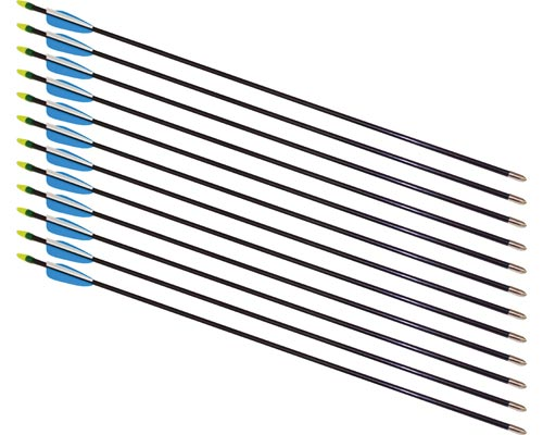 28'' Fiberglass Arrows - 12 Arrows: SP