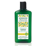 Andalou Naturals Hair Care Healthy Shine Sunflower & Citrus Shampoo Shampoo & Conditioner 11.5 fl oz: K