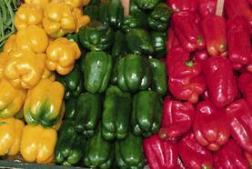 Bell Pepper, Green Diced 3/8'' 1 lb: K