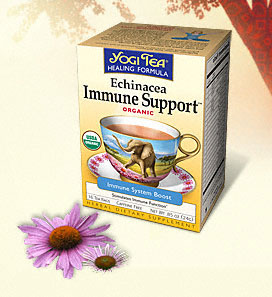 Echinacea Immune Support Tea** 16 t-bag box: C